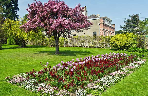 A kerti munkálatokhoz nyújt segítséget, növényeket és kiegészítőket Szigetszentmiklós határában a Garden Depot kertészet - illusztráció